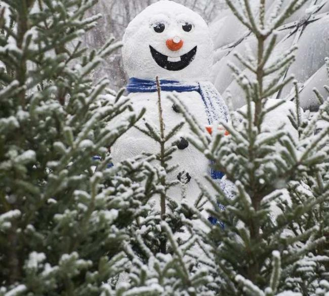 vancouverbc-december-5-2016-a-snowman-smiles-after-seei.jpeg