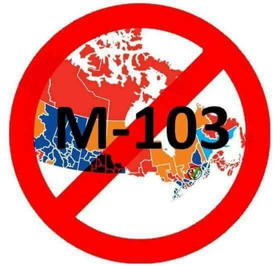 M-103通过了!加拿大国民的强烈反对并没有什么用