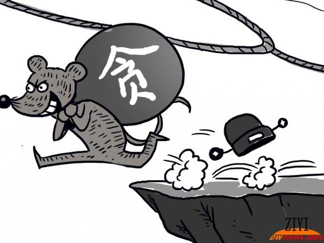 """举报程维高之子 温哥华网民变""""朝阳群众"""