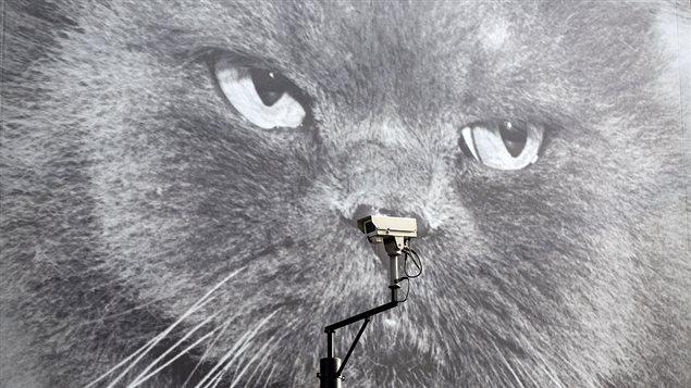 170825_g21cn_surveillance-0825_sn635.jpg