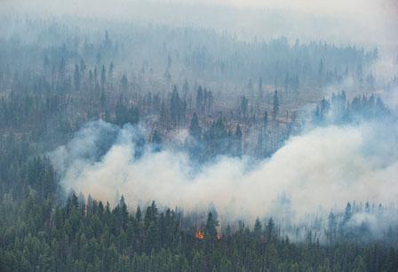 一场雨气温跌至近冰点 卑诗最具威胁山火终受控