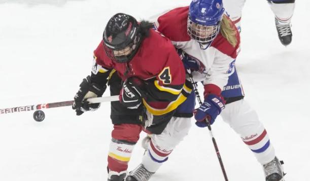 坏消息 加拿大女子冰球俱乐部联盟解散