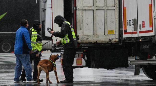 突发:法国冷藏货车里又发现这么多人 现场恐怖