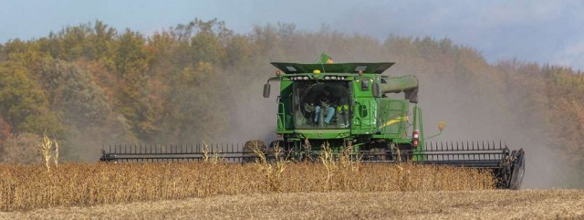 今年大豆大丰收农民笑不出来 中国不买倒河里