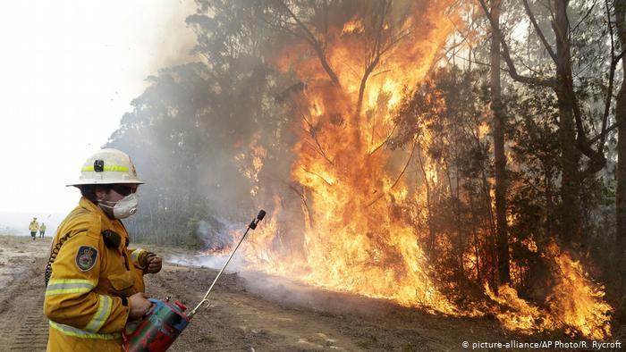 Australien Waldbrnde | Feuerwehr (picture-alliance/AP Photo/R. Rycroft)