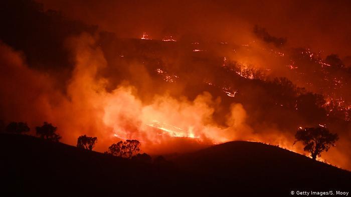 Australien Waldbrnde | Mount Adrah (Getty Images/S. Mooy)