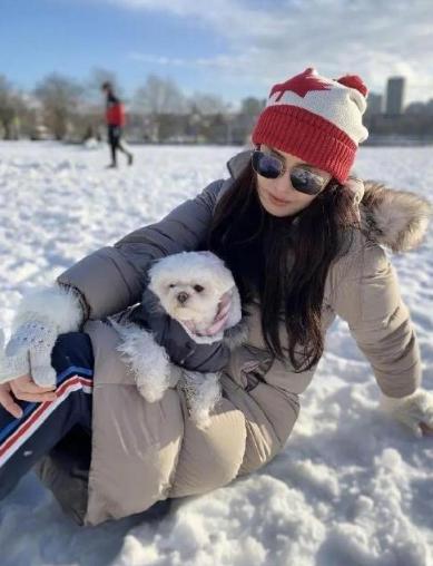 53岁王祖贤罕见晒雪中美照,仙女气质犹在