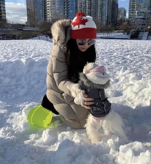 53岁王祖贤素颜近照,雪中抱狗惊艳众人,连发质都保养得青春飘逸