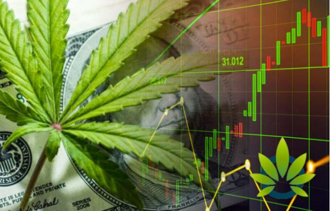 投资风口:为什么投资医用大麻和CBD行业?