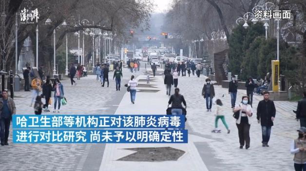 """中使馆发警报,哈国""""不明原因肺炎""""死亡超新冠"""