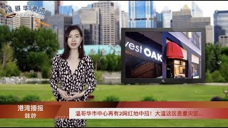 中國大使館否認向加拿大輸出假口罩