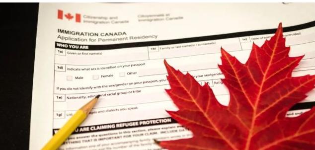 加拿大七月新增42万工作岗位,新移民暴增175%