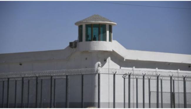 加拿大议会提交关于新疆维族境遇的报告