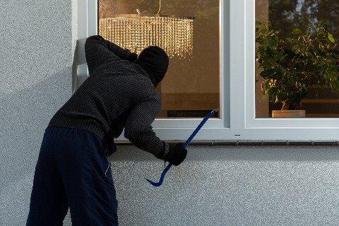 Burglar choosing a house.jpg