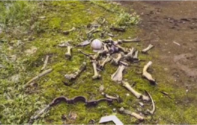 切尔诺内利街景曝光!惊现成堆白骨 疑人类遗骸