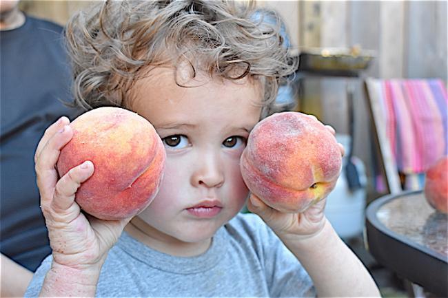 fruit04.JPG