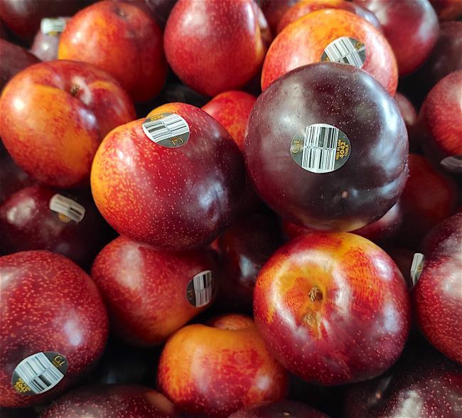 fruit05.jpg