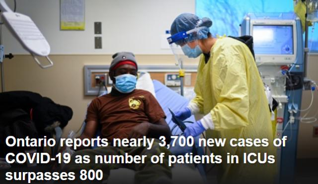 安省新增3682例死亡40人 确诊率7.8%