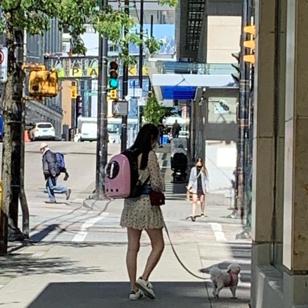 女神依旧!54岁王祖贤温哥华街头穿短裙遛狗