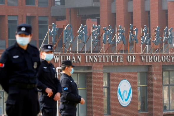 外泄文件:武汉科学家曾想放冠状病毒到蝙蝠洞