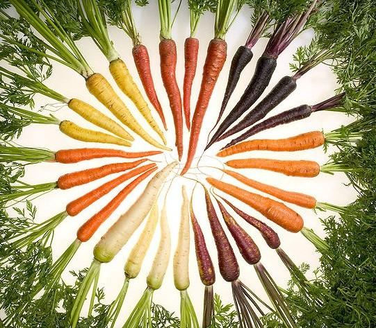 胡萝卜吃多了会维生素A中毒吗?