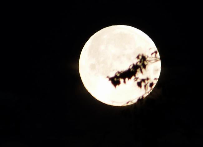 """的2013""""超级月亮"""""""