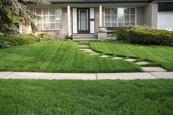 春天草坪维护的几大秘诀 保管你用的着