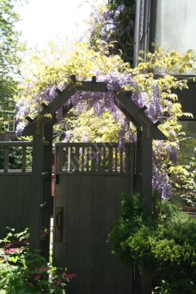 加国花草:花园的门该如何设计?