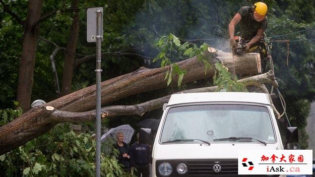 暴风雨大断电 汽车被大树砸中 幸运逃生