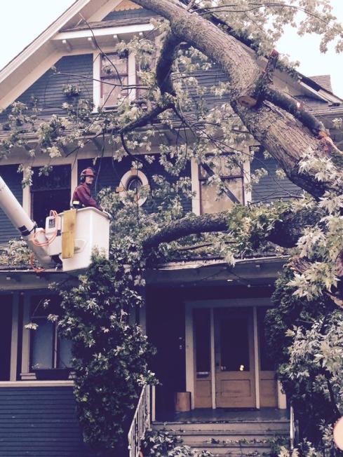 暴风雨中独立屋若受损 速联系保险公司