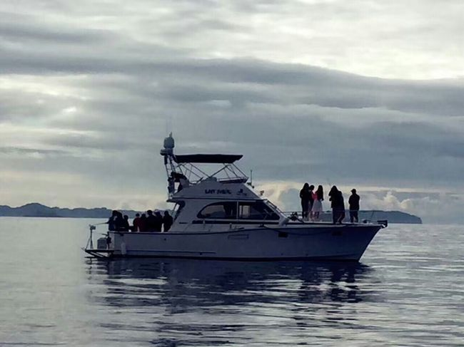 Tommy船长伴你行:在加拿大海钓其乐无穷(1)