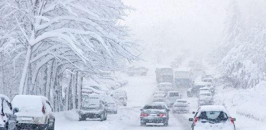 渥太华天气预报_大雪飞扬!加拿大卡尔加里迎白色感恩节-新华侨网