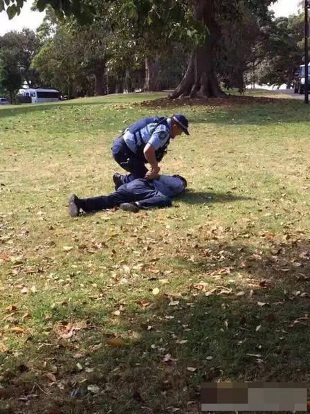 中国游客悉尼随地大小便 被警察摁倒逮捕