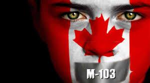 """""""婊子滚出加拿大!""""  M-103的议员遭死亡威胁"""