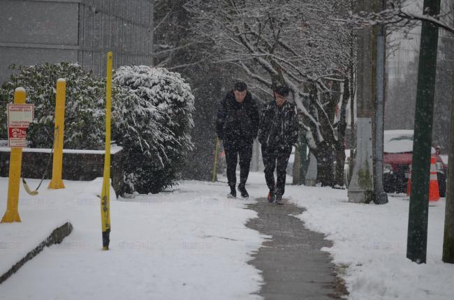 加拿大环境部预测 大温地区有机会再下雪