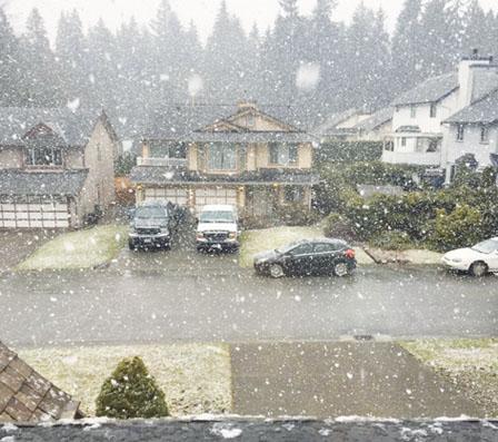 大温哥华3月飘雪 多达十几厘米