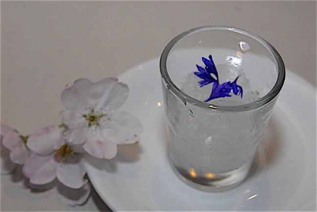 09 market yuzu shochu.JPG