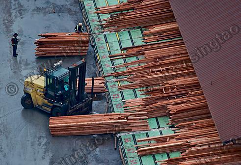 美國料周二宣布 向加國軟木征稅