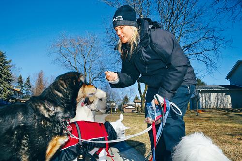 加拿大专业持牌遛狗员 年收入可达6万元