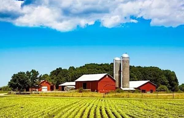 不收外国买家税 中国买家抢农地建巨屋 地价飙升