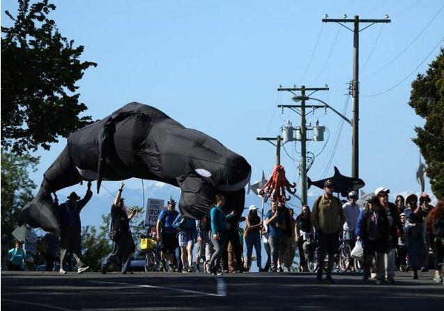 反油管75公里游行 示威者从维多利亚走到本拿比