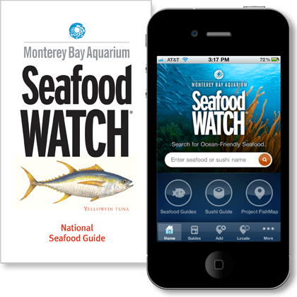Seafood Guide Phone.png