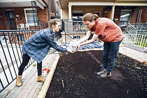 新风潮!公寓住户借独立屋后院种菜 成果对半分