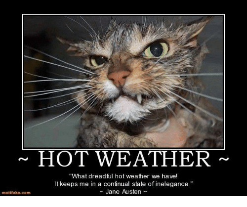 motifake-comm-hot-weather-what-dreadful-hot-weather-we-have-14065874.png