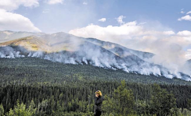 卑诗山火已烧掉3.52亿元 仍不断有新火情出现