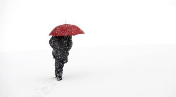 加拿大老农夫年鉴预测来了:温哥华将迎来暖冬