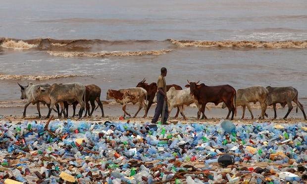 重磅:加拿大宣布,禁用一次性塑料用品