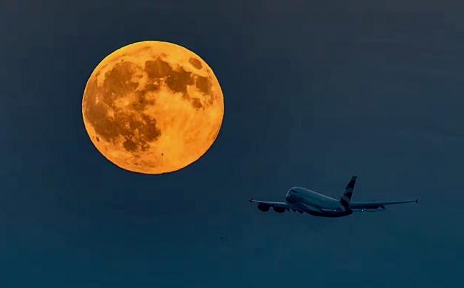 枫情万种 加拿大的月亮