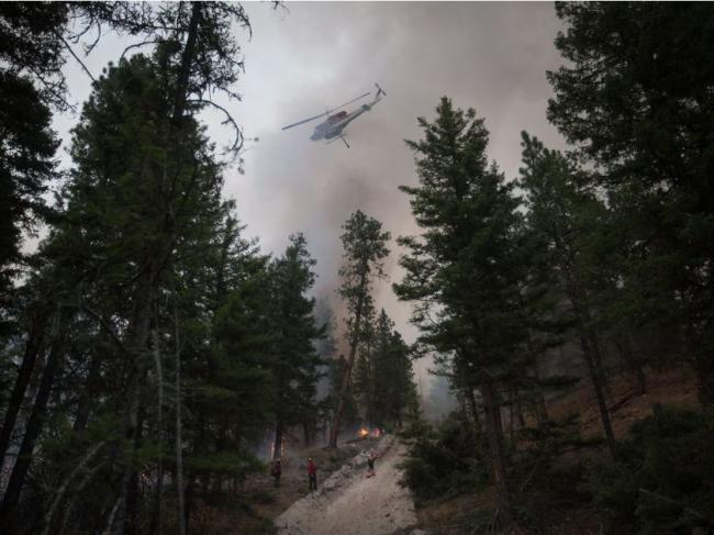 BC林火损失惨重!损失$1亿2700万,数字仍在攀升