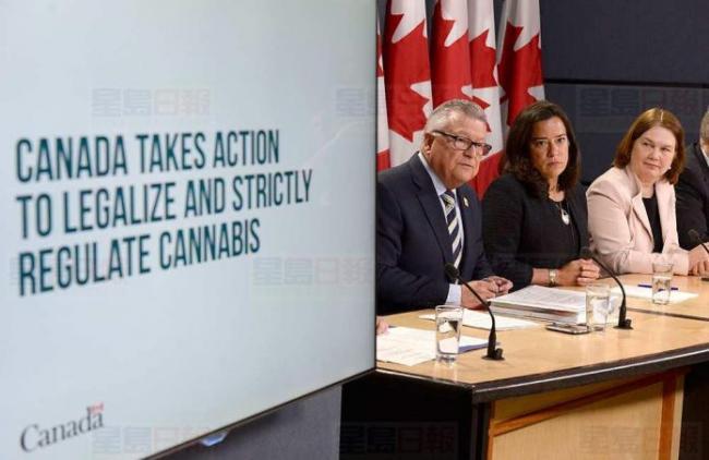 大麻明年合法化 相关职位招聘及课程已悄悄开展